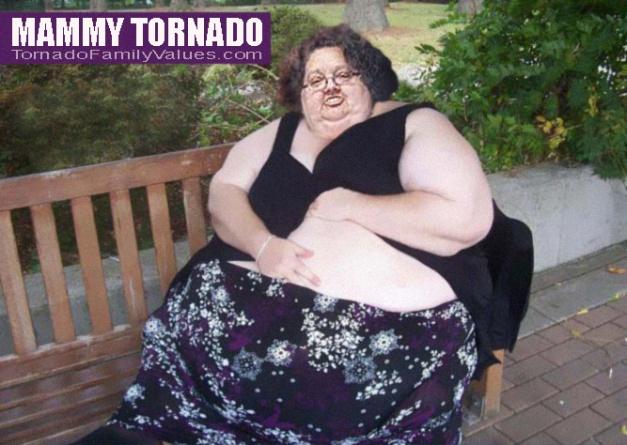 mammy tornado park