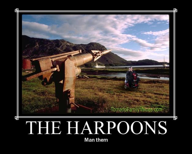 man the harpoons