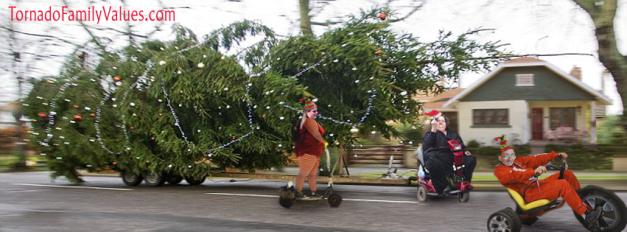 christmas tree thieves