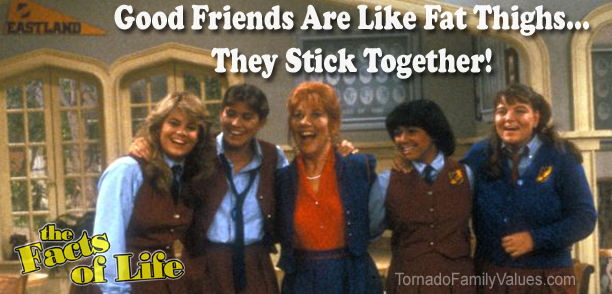 good friends are like fat thighs facts of life jo blair