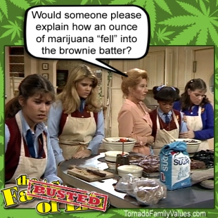 jo blair facts of life busted weed marijuana