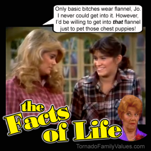 jo blair facts of life chest puppies