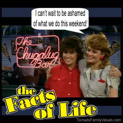 JO BLAIR FACTS OF LIFE DRUNK LESBIANS ashamed weekend