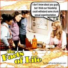 jo-blair-facts-of-life-drunk-sexual-experimentation