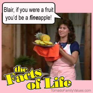 jo blair facts of life fineapple
