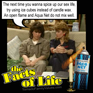 jo blair facts of life friends lesbians spice up sex life 2