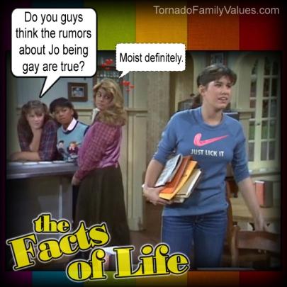 jo blair facts of life gay lesbians rumors
