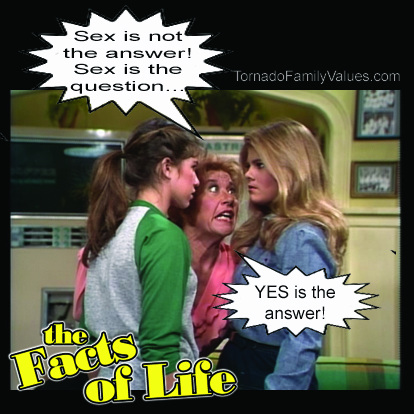 jo blair facts of life lesbian sex is the answer