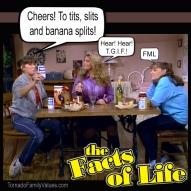jo-blair-facts-of-life-lesbians-tgif-fml