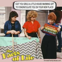 jo blair facts of life mrs garret house warming gift gay