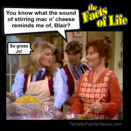 JO BLAIR FACTS OF LIFE STIRRING MAC AND CHEESE