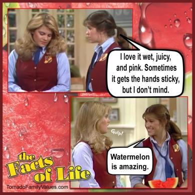 jo blair facts of life watermelon wet juicy pink lesbians