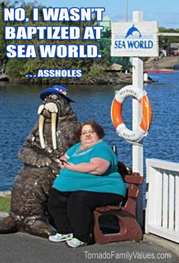 sea world mammy