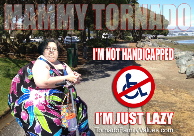Not handicapped just lazy