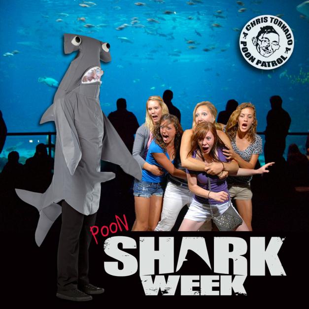 poon shark week