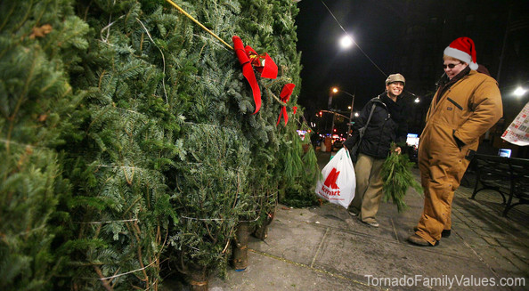 christmas tree sales tammy tornado