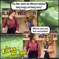 hungry horny cucumber joke cousin geri blair warner facts of life